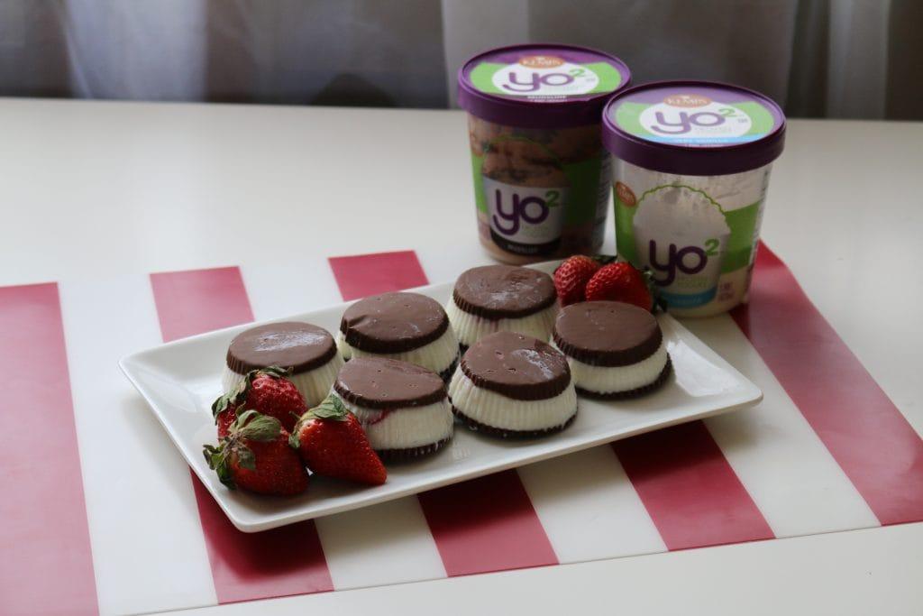 fro-yo-frozen-yogurt-kemps-yo-2