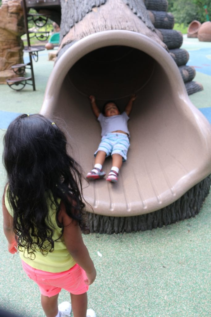 IMG 8092 683x1024 - Descubriendo parques en Maryland