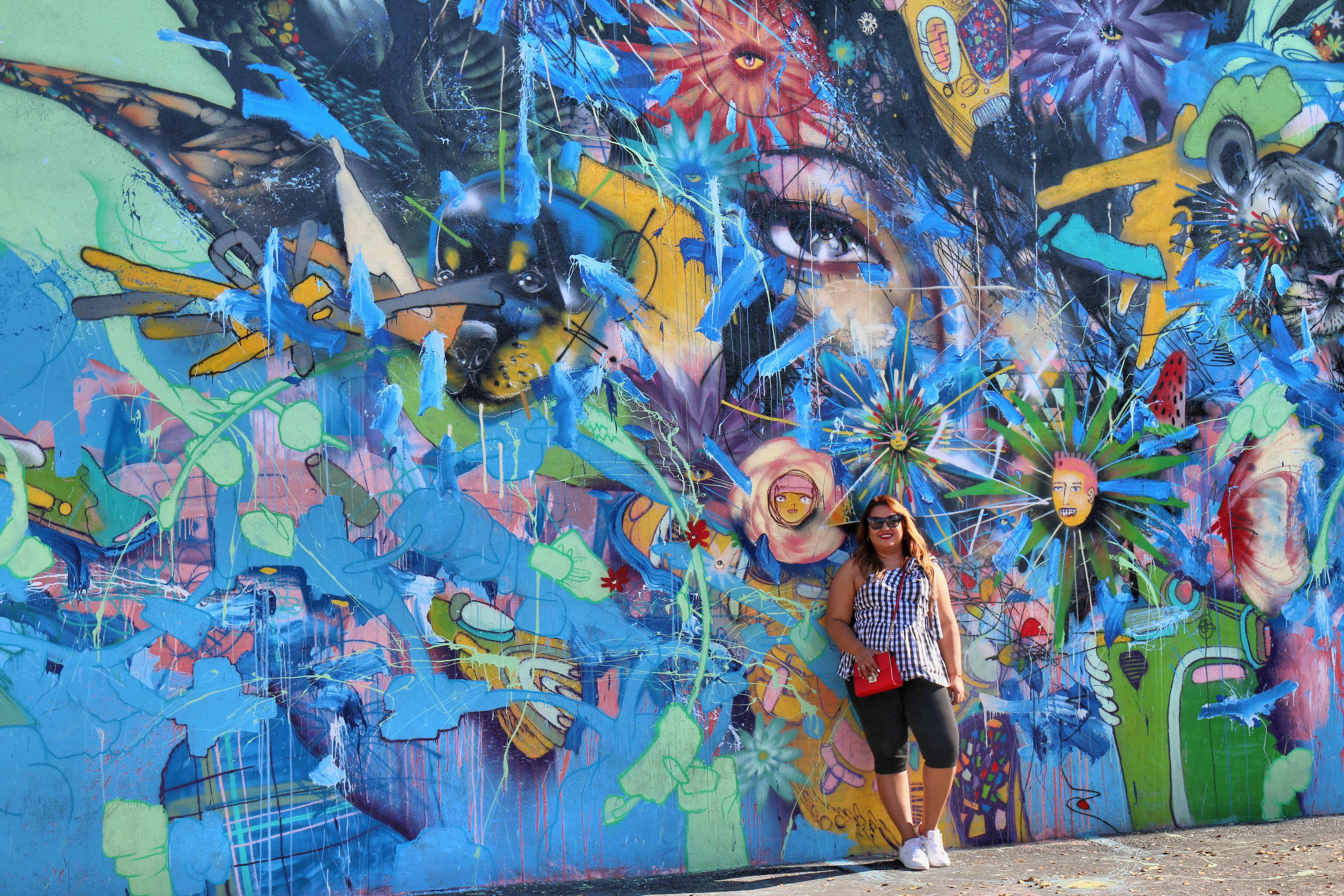Enlight1194 - Wyndwood Walls Miami : Una Galeria de arte al aire libre