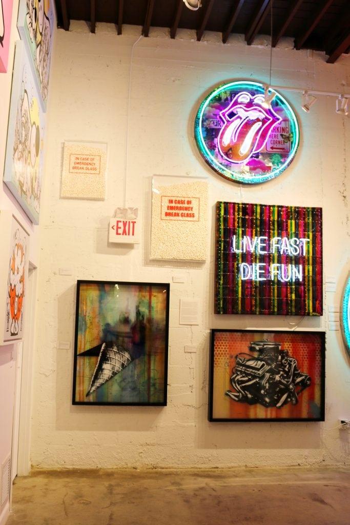 Enlight1199 683x1024 - Wyndwood Walls Miami : Una Galeria de arte al aire libre